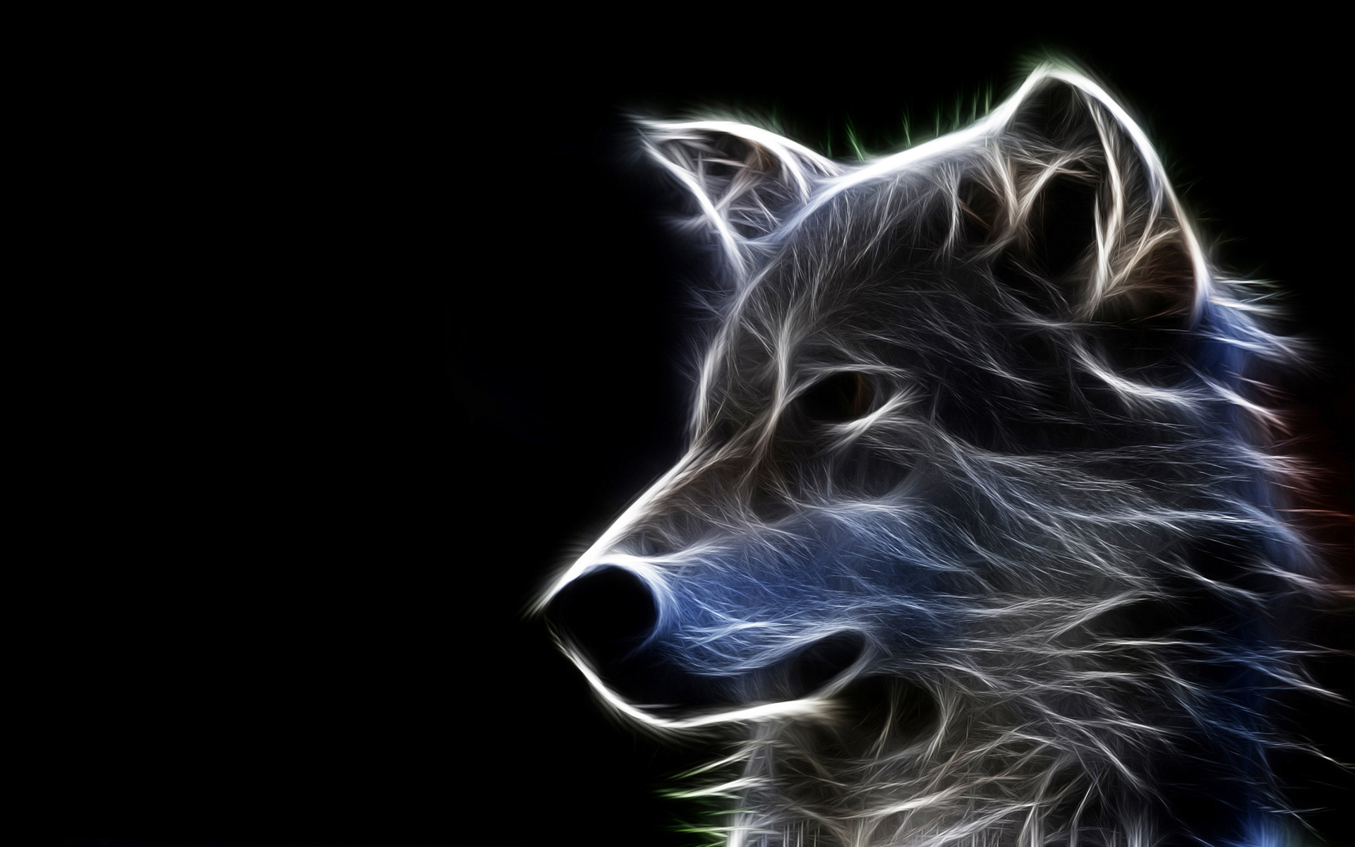 3d wallpapers animal 45 wallpapers � adorable wallpapers