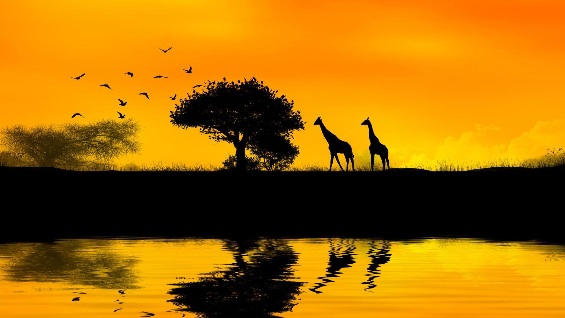 Africa Wallpapers  Best Wallpapers 1920x1080
