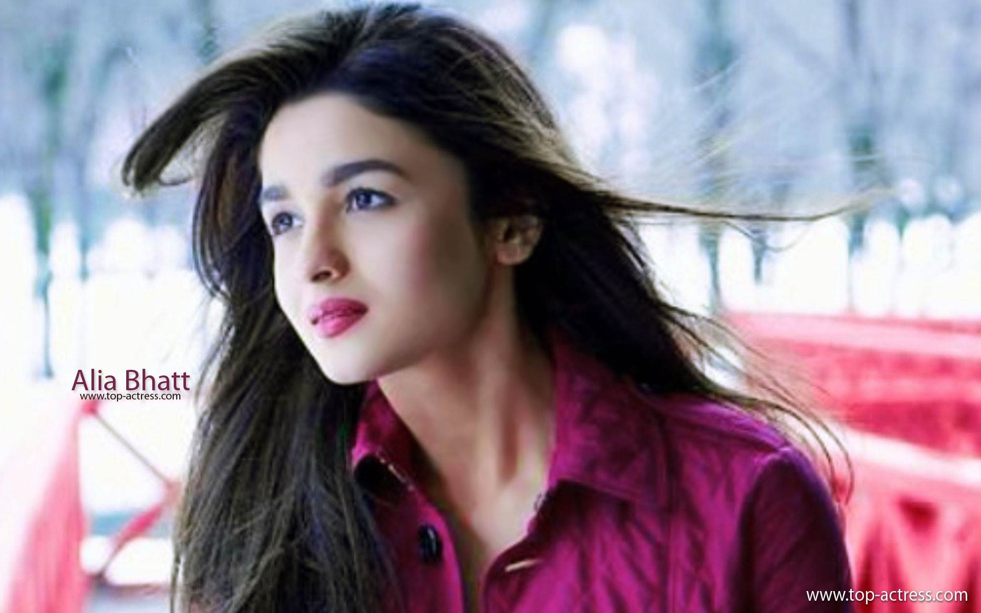 Free Download Unseen Alia Bhatt HD Wallpapers  1920x1200