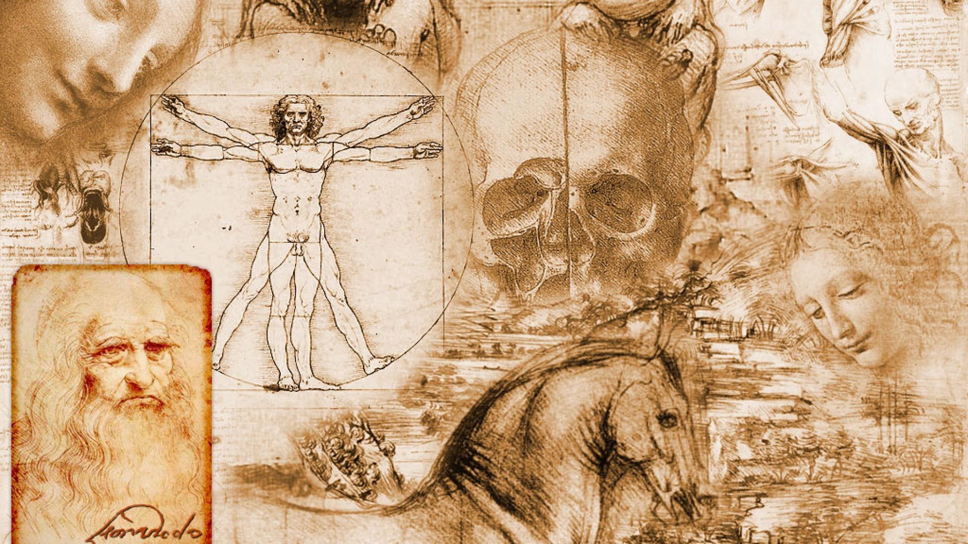 Anatomy Human Body Nerves Wallpaper Wallpaperup 1920x1080