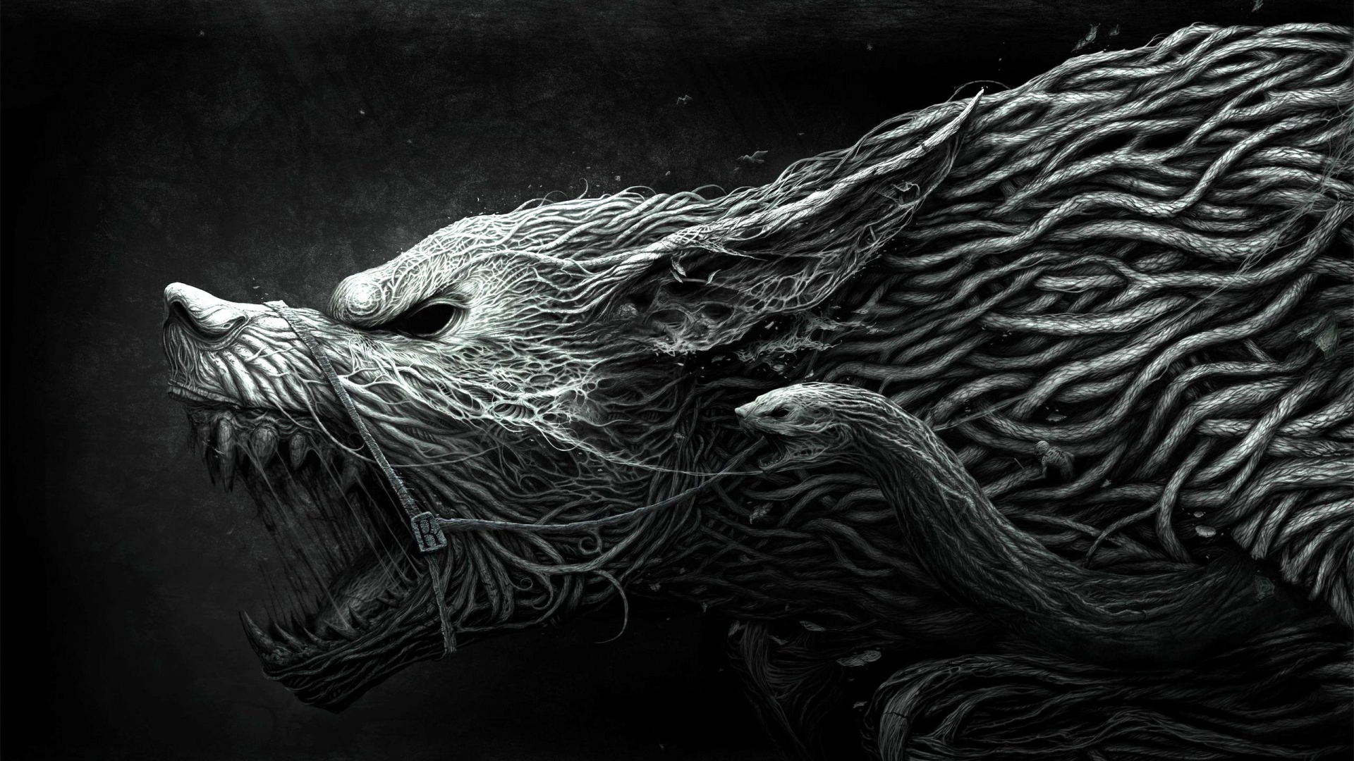 Best wallpaper hd p free download ×  wolf  Page  1920x1080