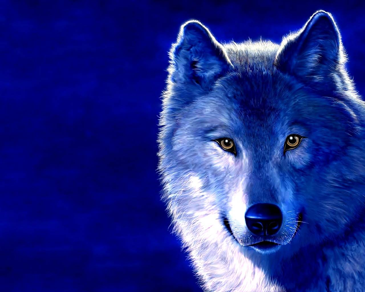 Wolf HD Wallpapers  Backgrounds  Wallpaper  1280x1024