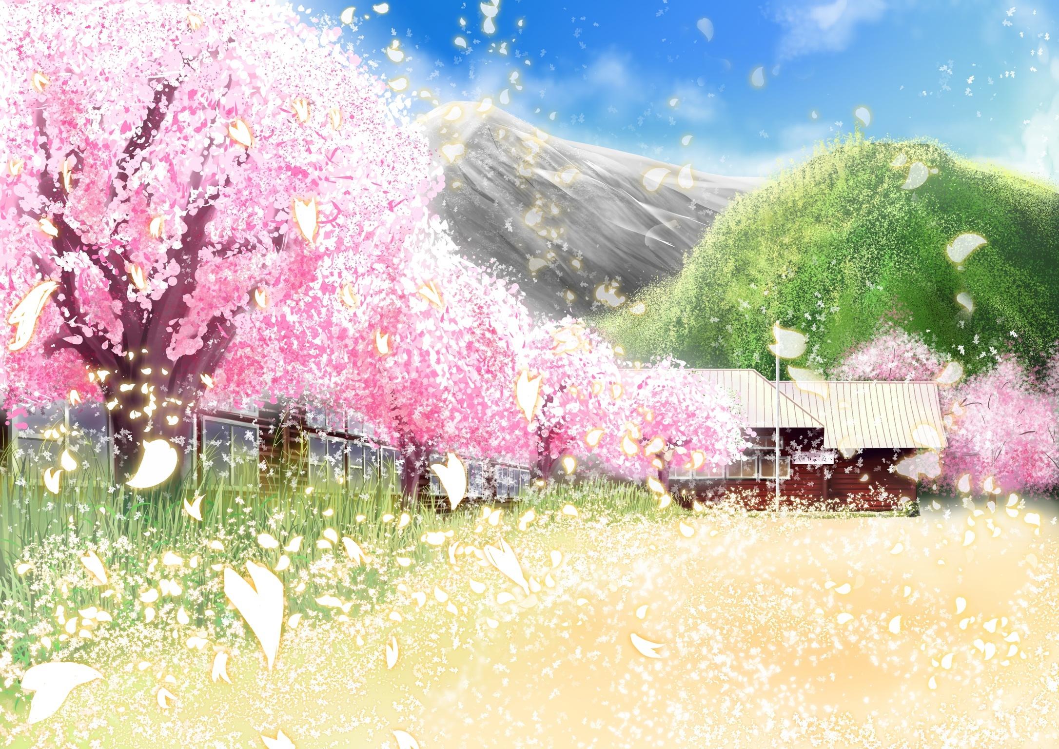 Anime Cherry Blossom Phone Wallpaper
