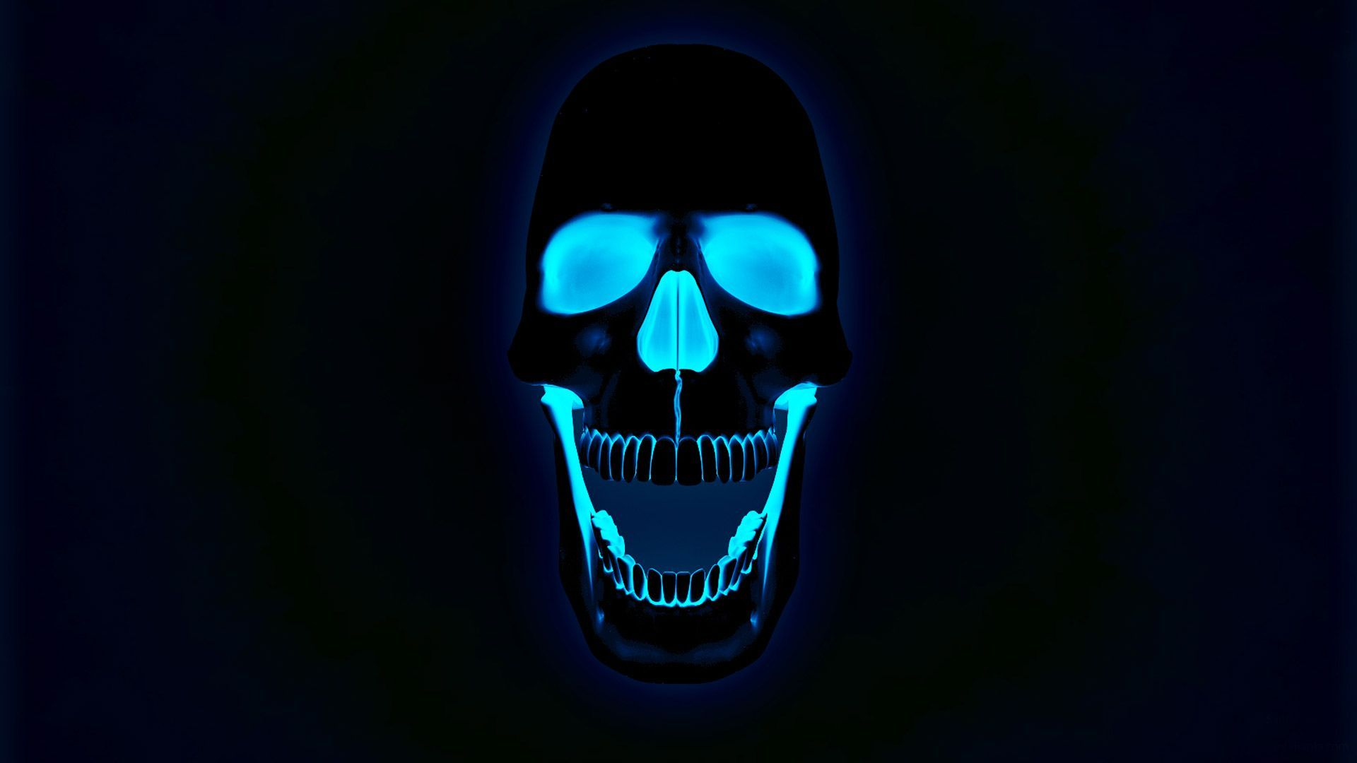 Skull Wallpapers, Awesome Skull Pictures and Wallpapers  1920x1080