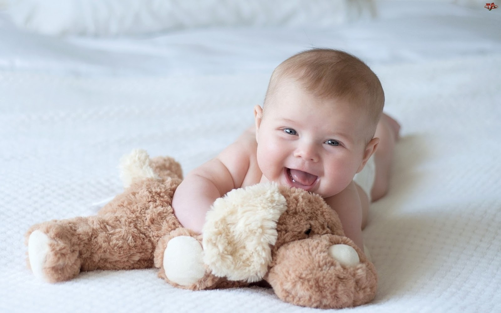 Cute New Born Baby Boy Wallpaper Baby Wall 1600x1000
