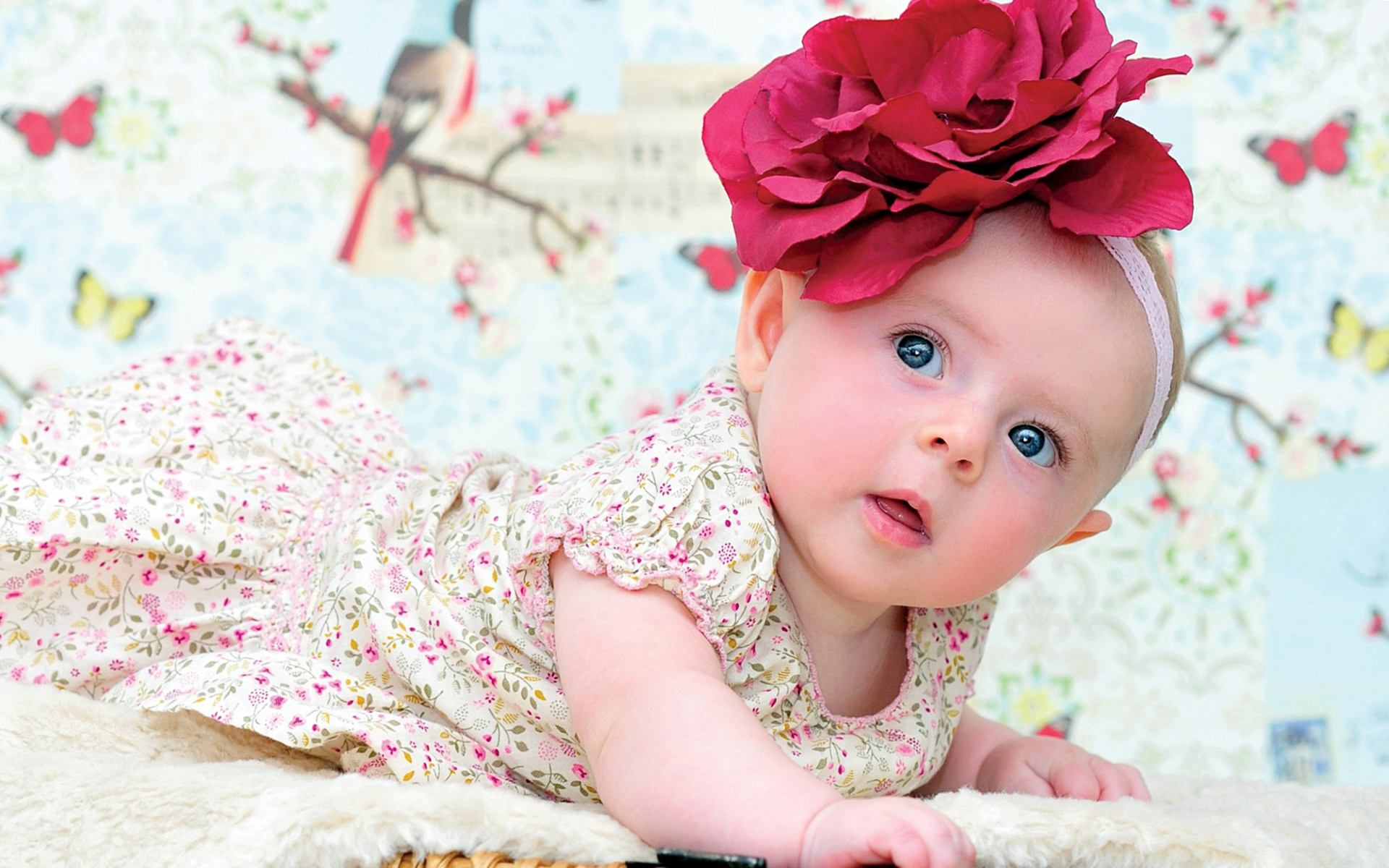 Cute and Lovely Baby Pictures Free Download  Allfreshwallpapers 1920x1200