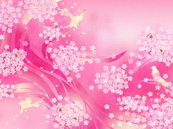 The Abstract Soft Sweet Pink Flower Background From
