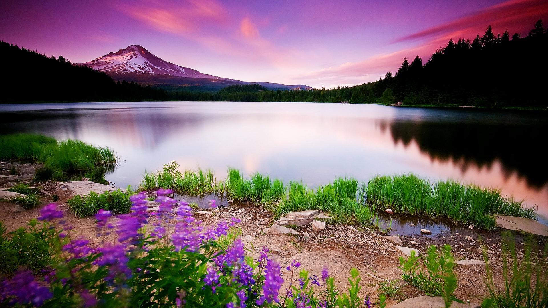 Nature Backgrounds Photoshop Editing Natural Photos Wall Nature Hd