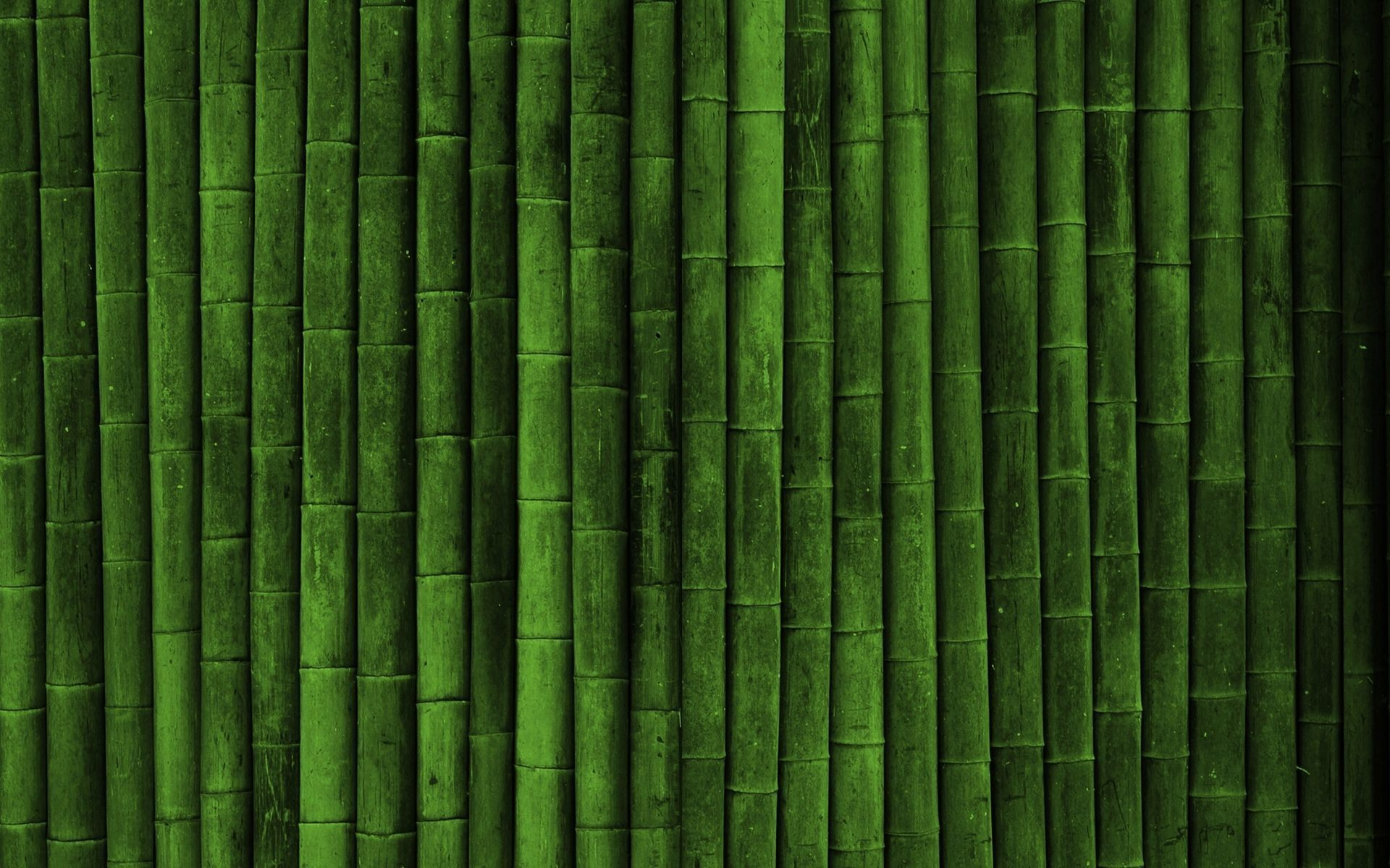Bamboo Wallpaper Best FREE Wallpaper Collection 1920x1200