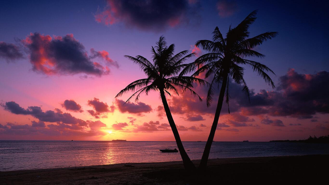 Sunset Wallpapers HD Wallpaper 1366x768