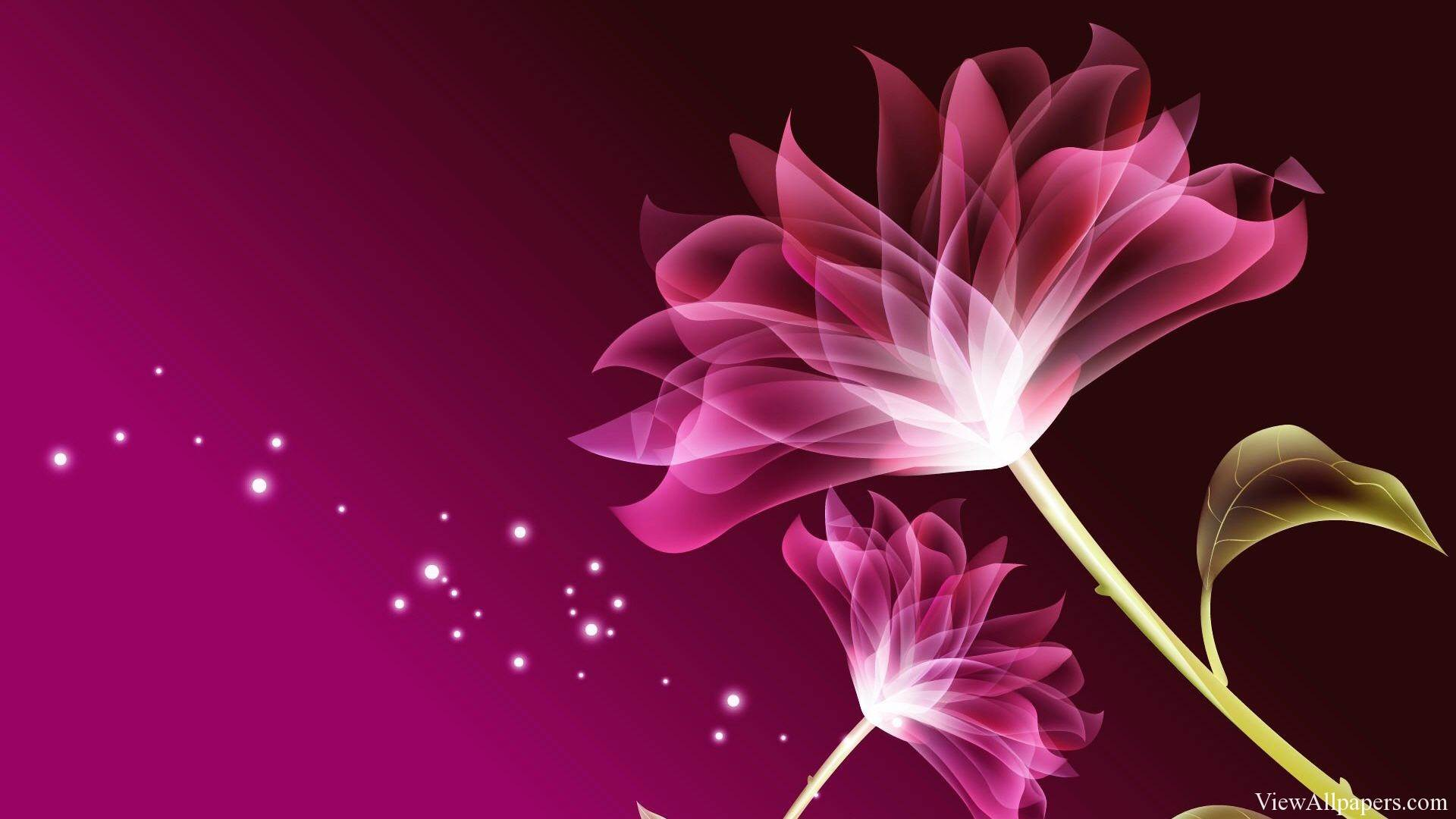 unknown beautiful flowers - flower wallpapers free download 1920x1080