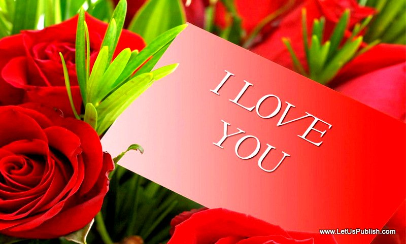 Cute and Beautiful Love Wallpaper Free Download HD 800x481