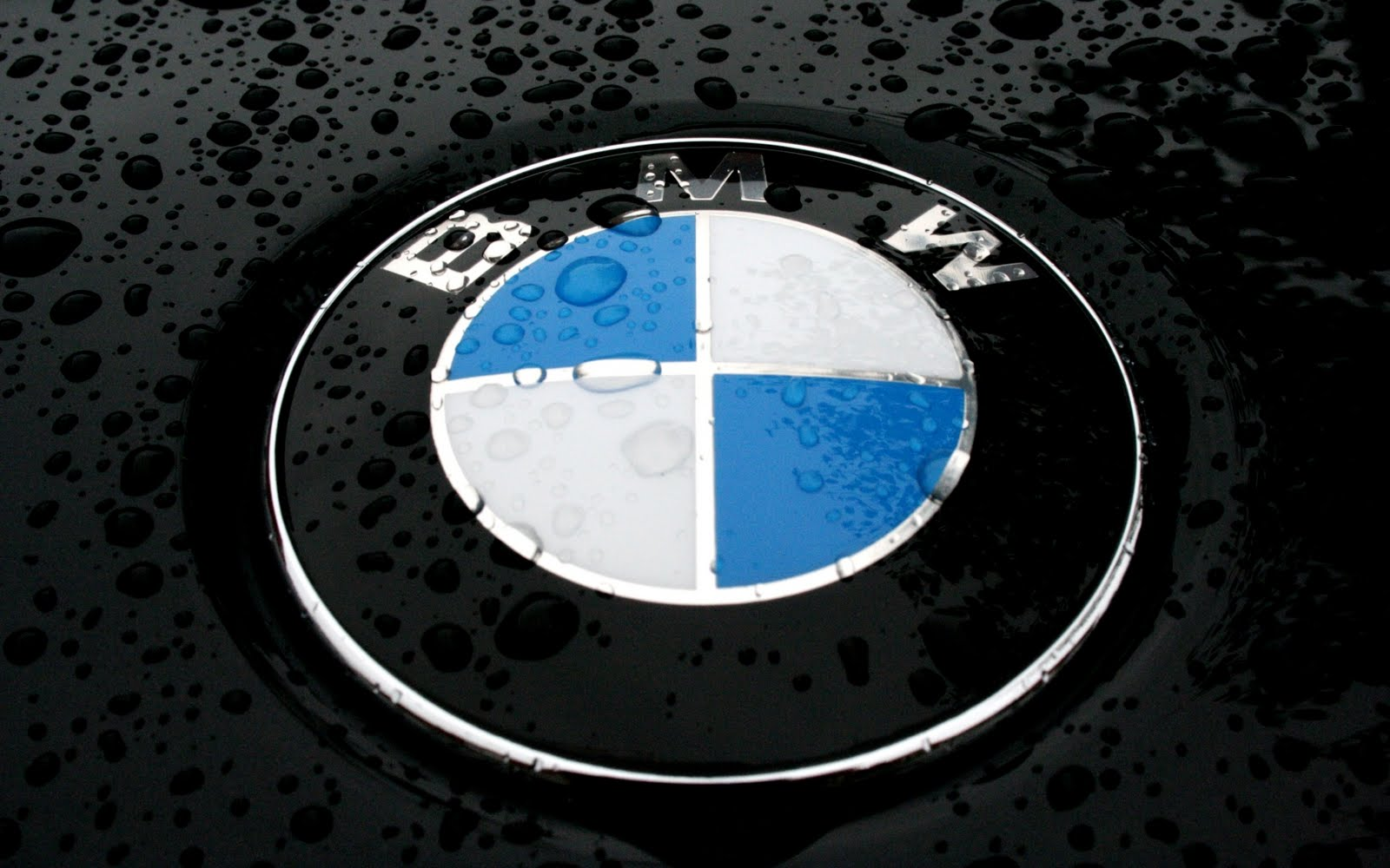 HD BMW Wallpapers/Backgrounds For Free Download 1600x1000