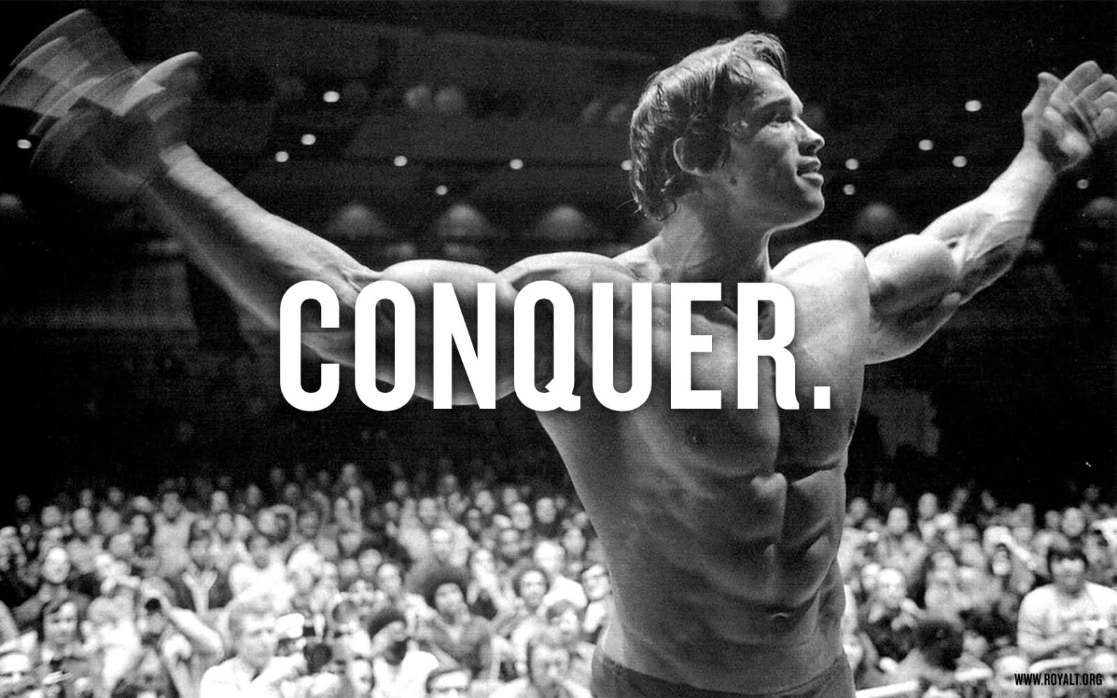 Delightful Arnold Schwarzenegger Bodybuilding Wallpaper Wallpaper Strong Comic  Bodybuilding Quote Wallpaper 1600x1000