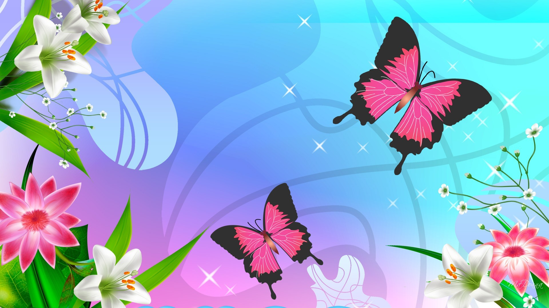 Beautiful Butterfly Wallpapers Group  1920x1080