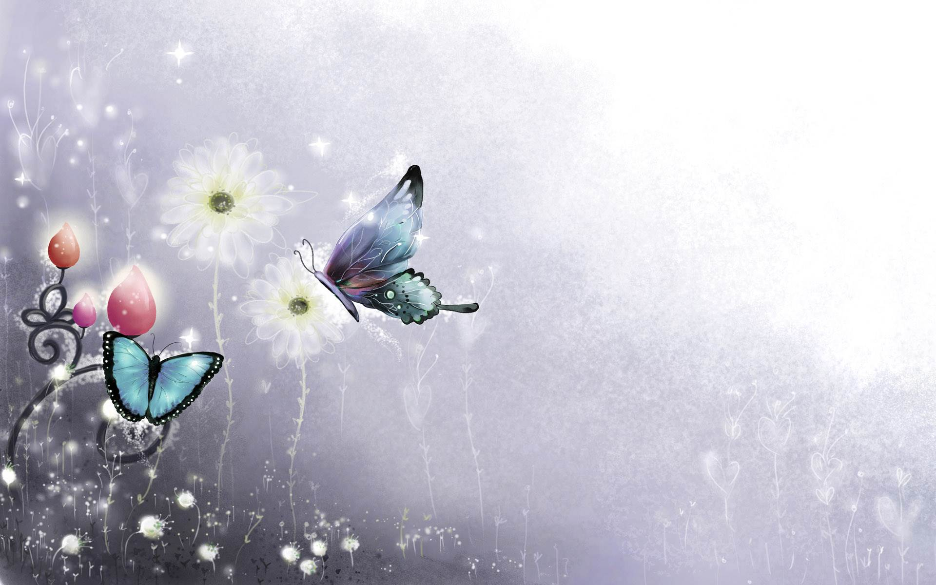 butterfly picture 006