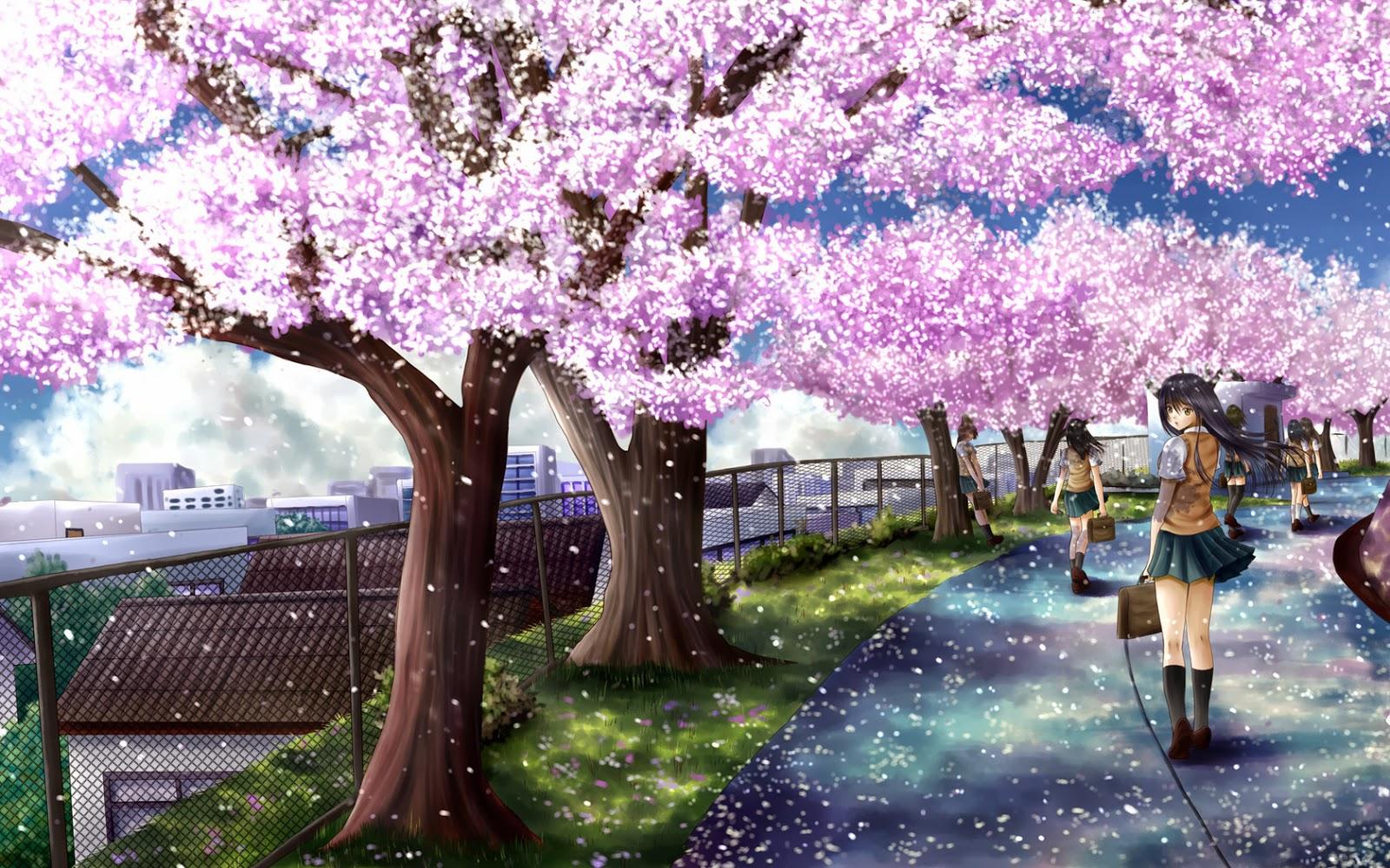 Simple Wallpaper Night Cherry Blossom - Cherry-Blossom-Tree-Wallpapers-044  2018.jpg