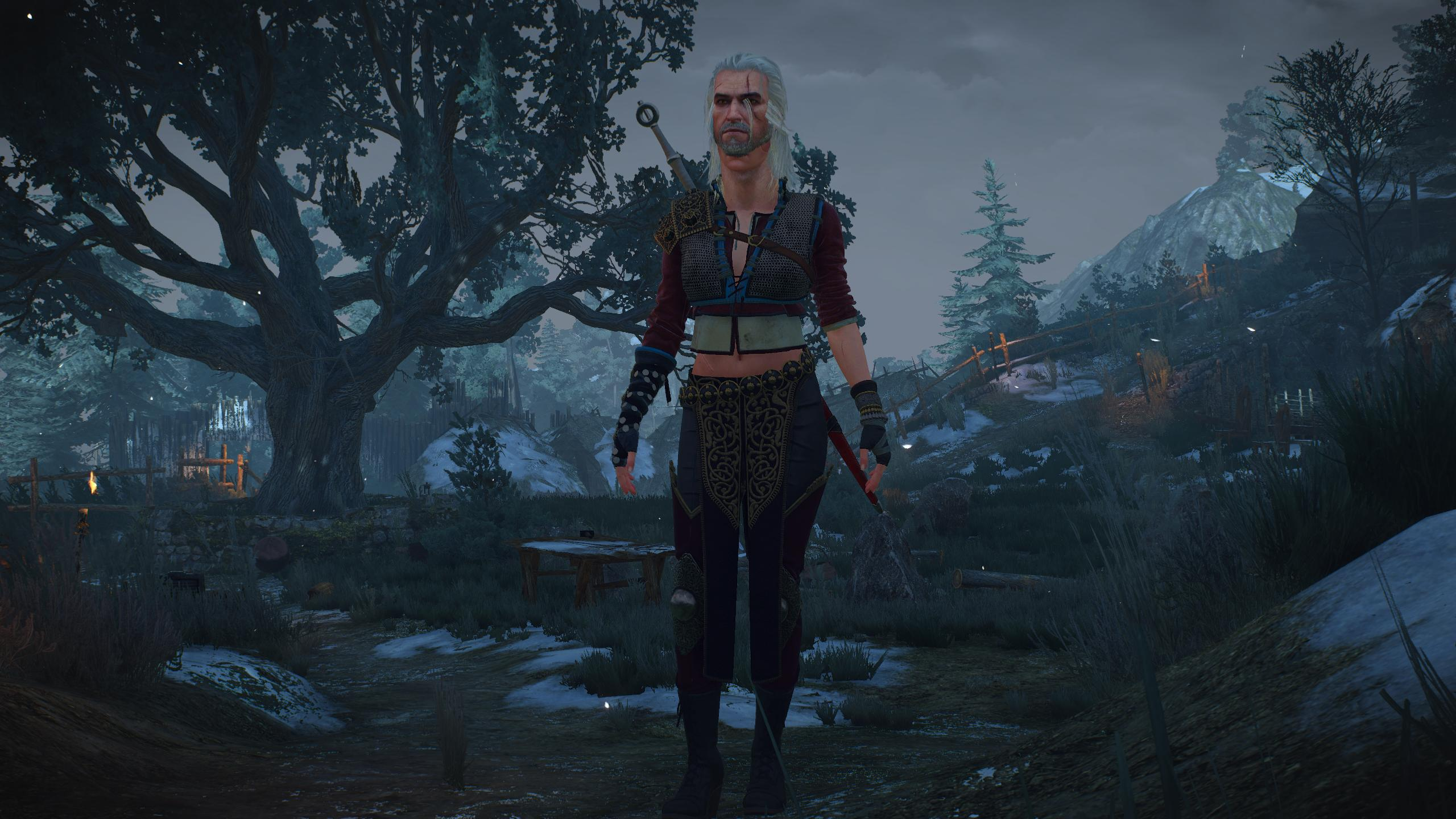 Downaload Ciri The Witcher Wild Hunt artwork video game