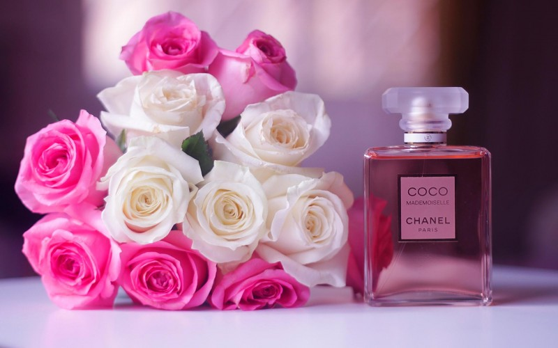 Coco Chanel HD Desktop Wallpaper High Definition Fullscreen 800x500