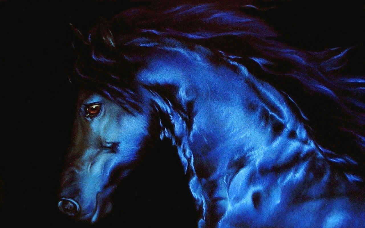cool horse wallpapers free wallpaper download 1280x800