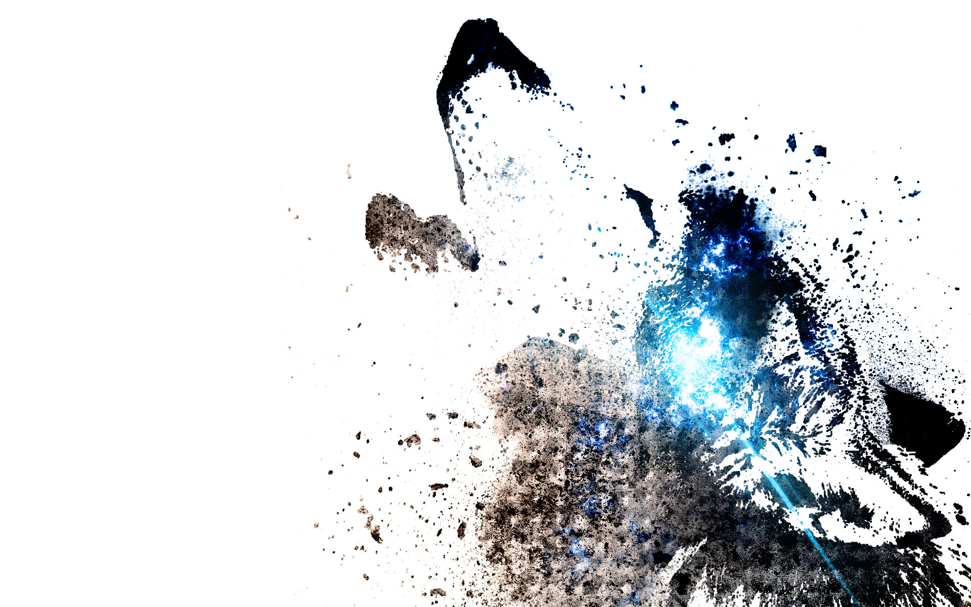 Wolf HD Wallpapers Backgrounds Wallpaper 1920x1200