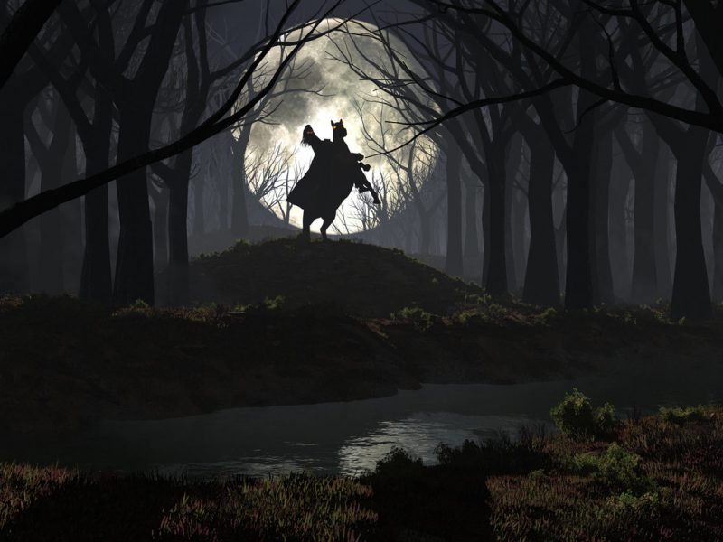 Creepy Forest Wallpaper Eot Nature Desktop Backgrounds 800x600