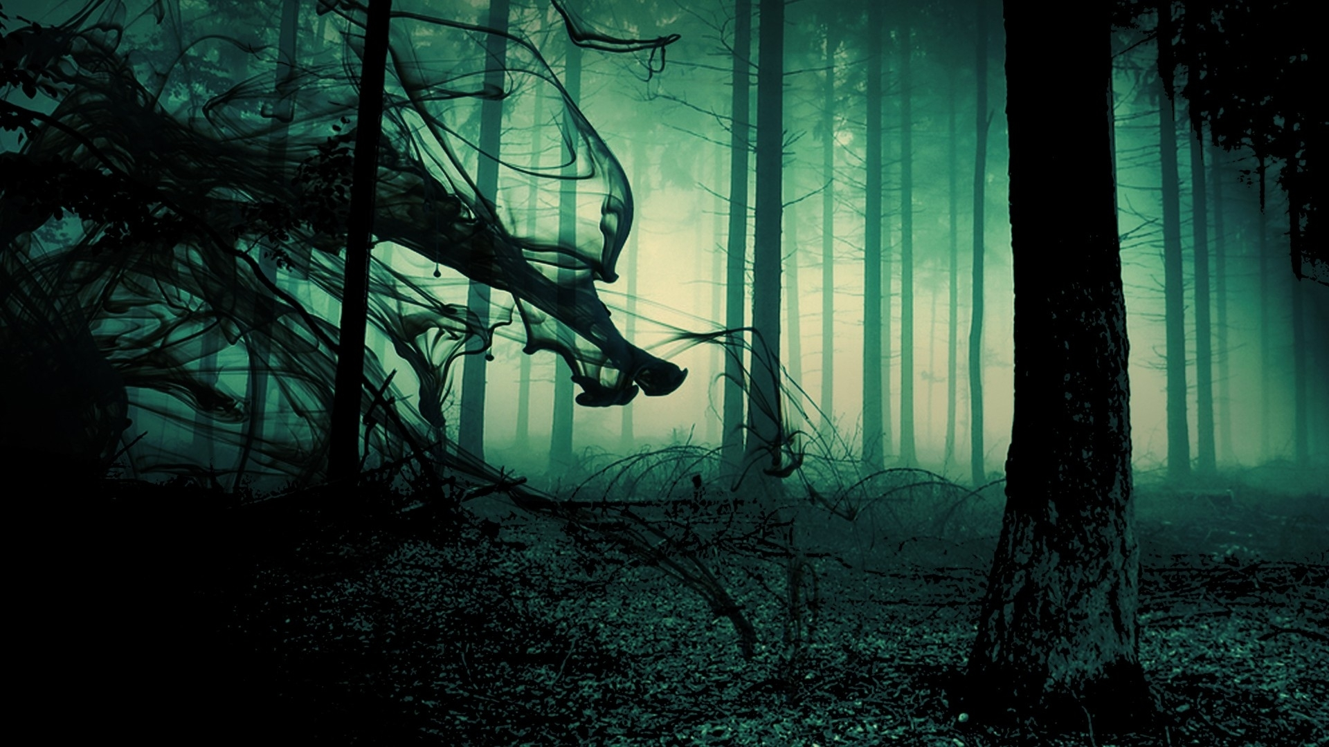 Creepy Forest Backgrounds Group 1920x1080