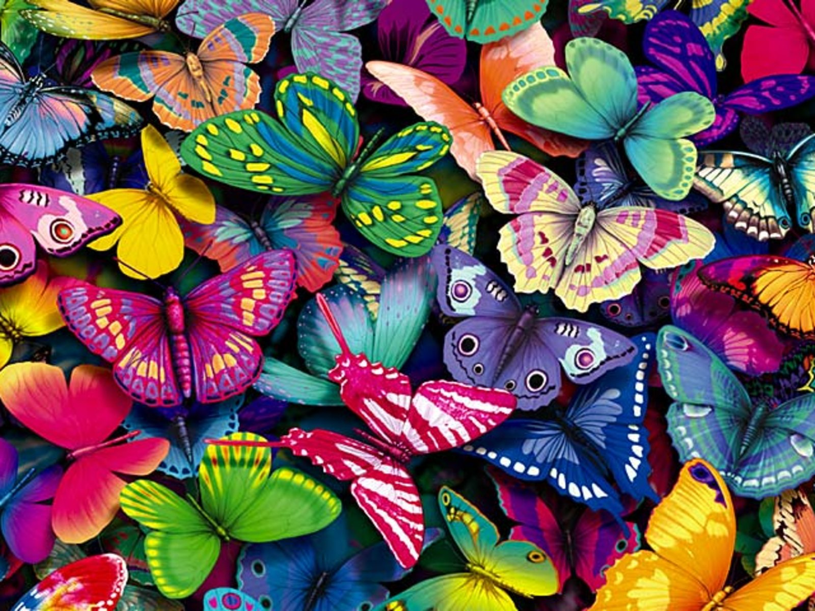 Cute Butterfly Backgrounds 1600x1200