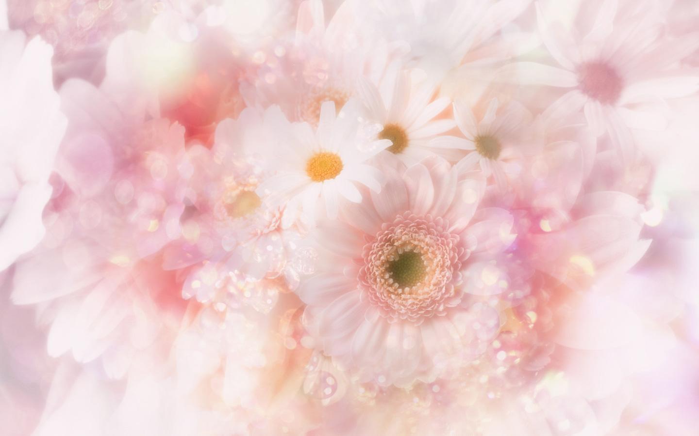Cute baby in flowers wallpapers hd wallpapers 1440x900 mightylinksfo