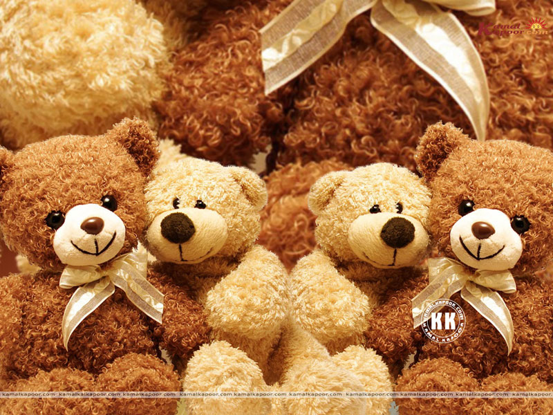 Cute Teddy Bear Live Wallpaper For Android Free Download Apps 800x600