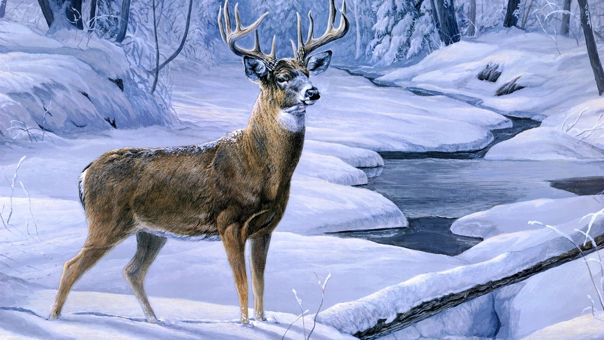 Fantasy Wallpapers HD and Widescreen  Painting Art Deer wallpaper 1920x1080