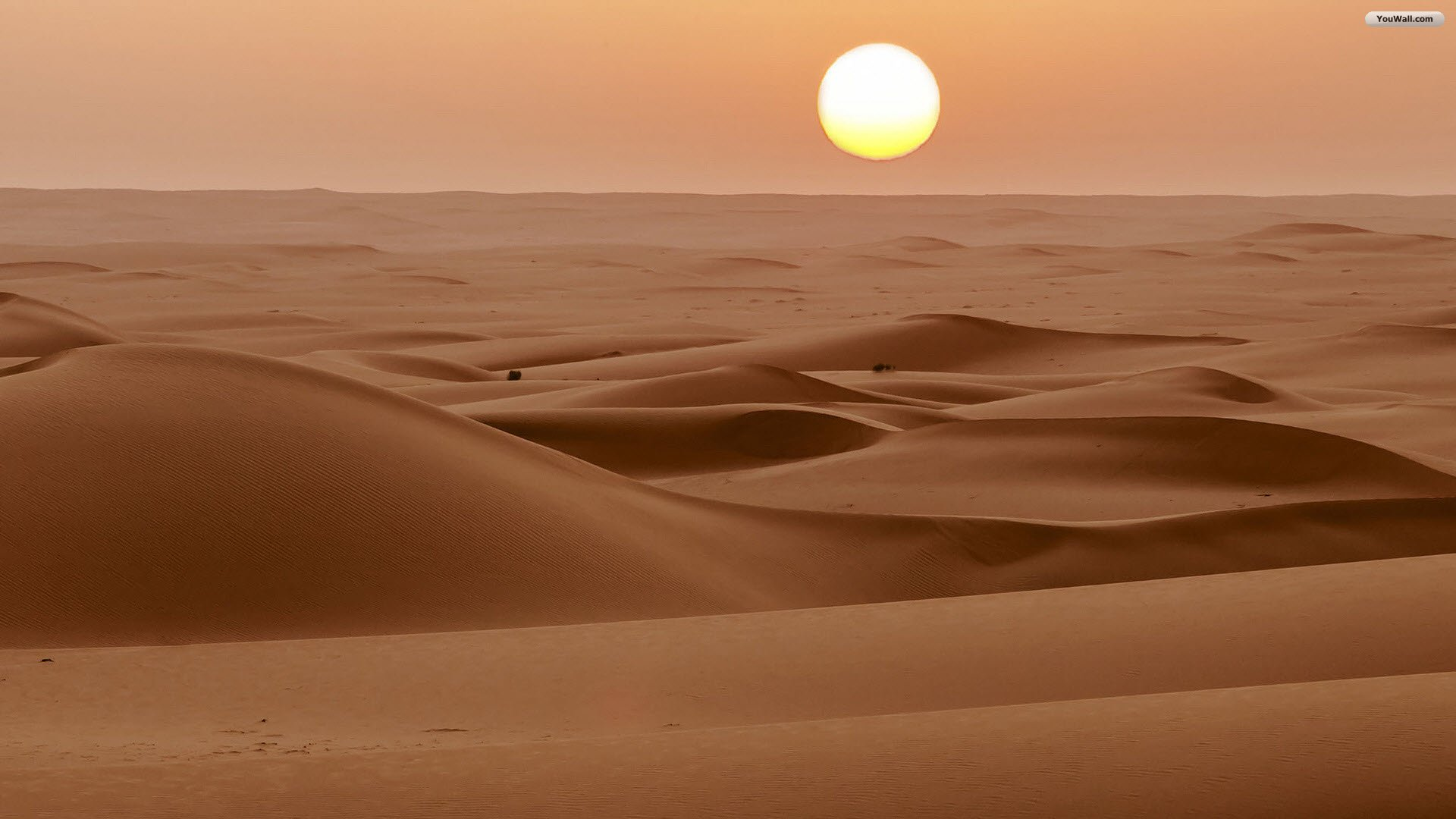 Desert Wallpapers High Quality  Download Free 1920x1080