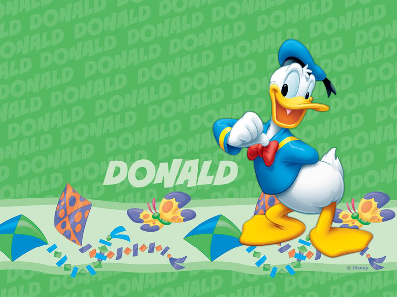 Donald Duck images Donald Duck Wallpaper HD wallpaper and 800x600
