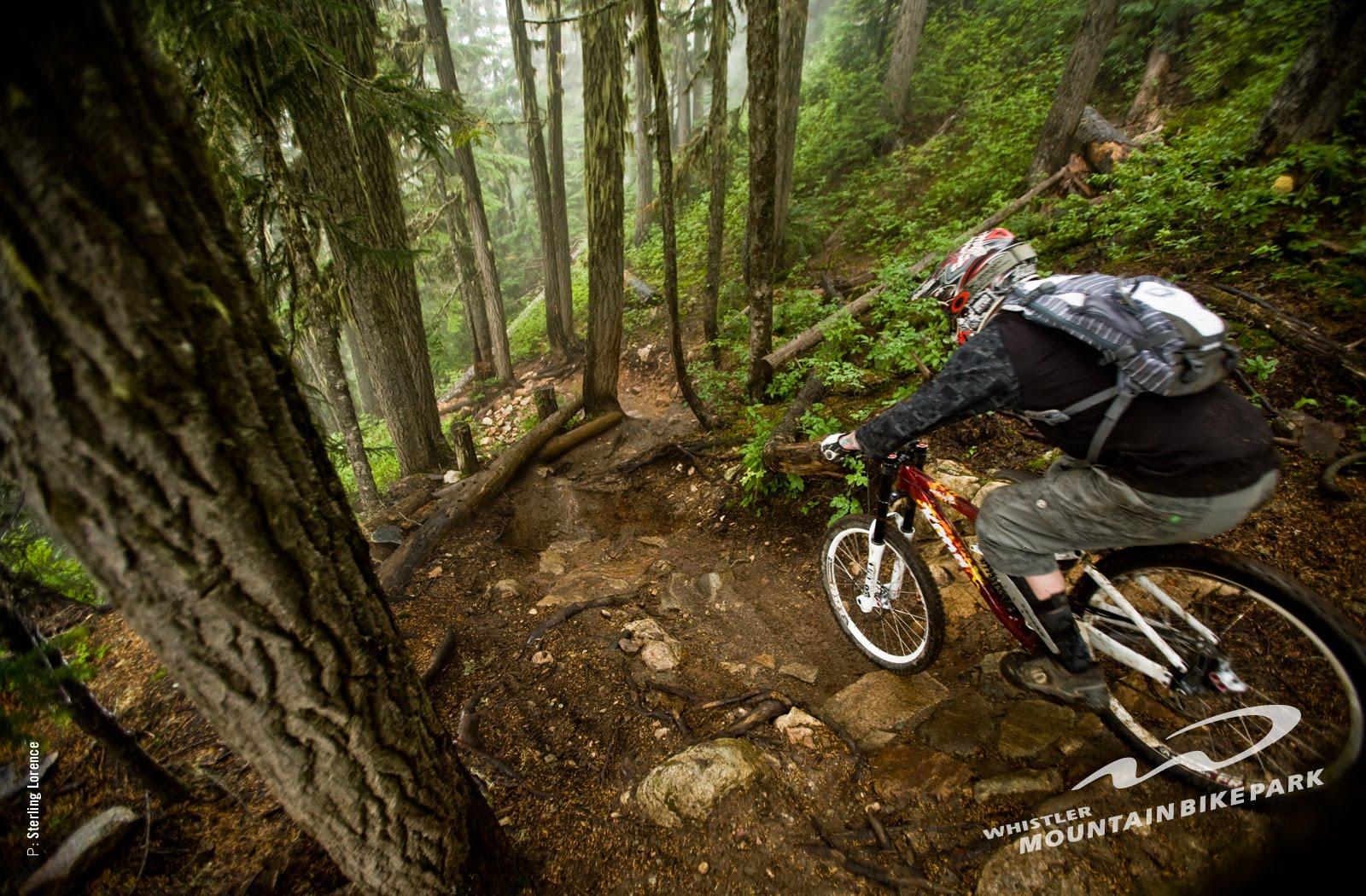 Red Bull Bmx Mountain Bike