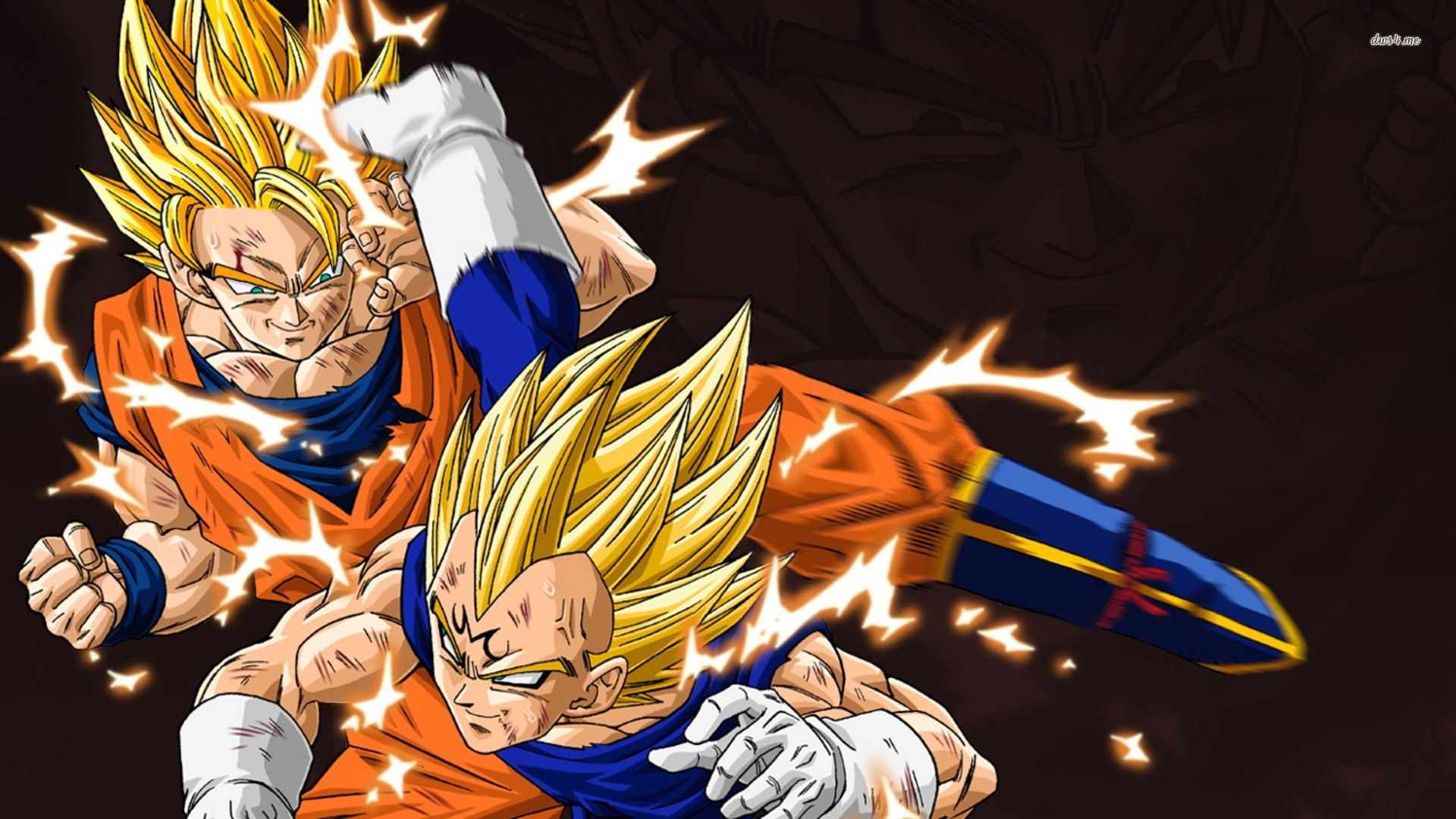 Collection Of Dragon Ball Z Wallpaper On Hdwallpapers 1920x1080