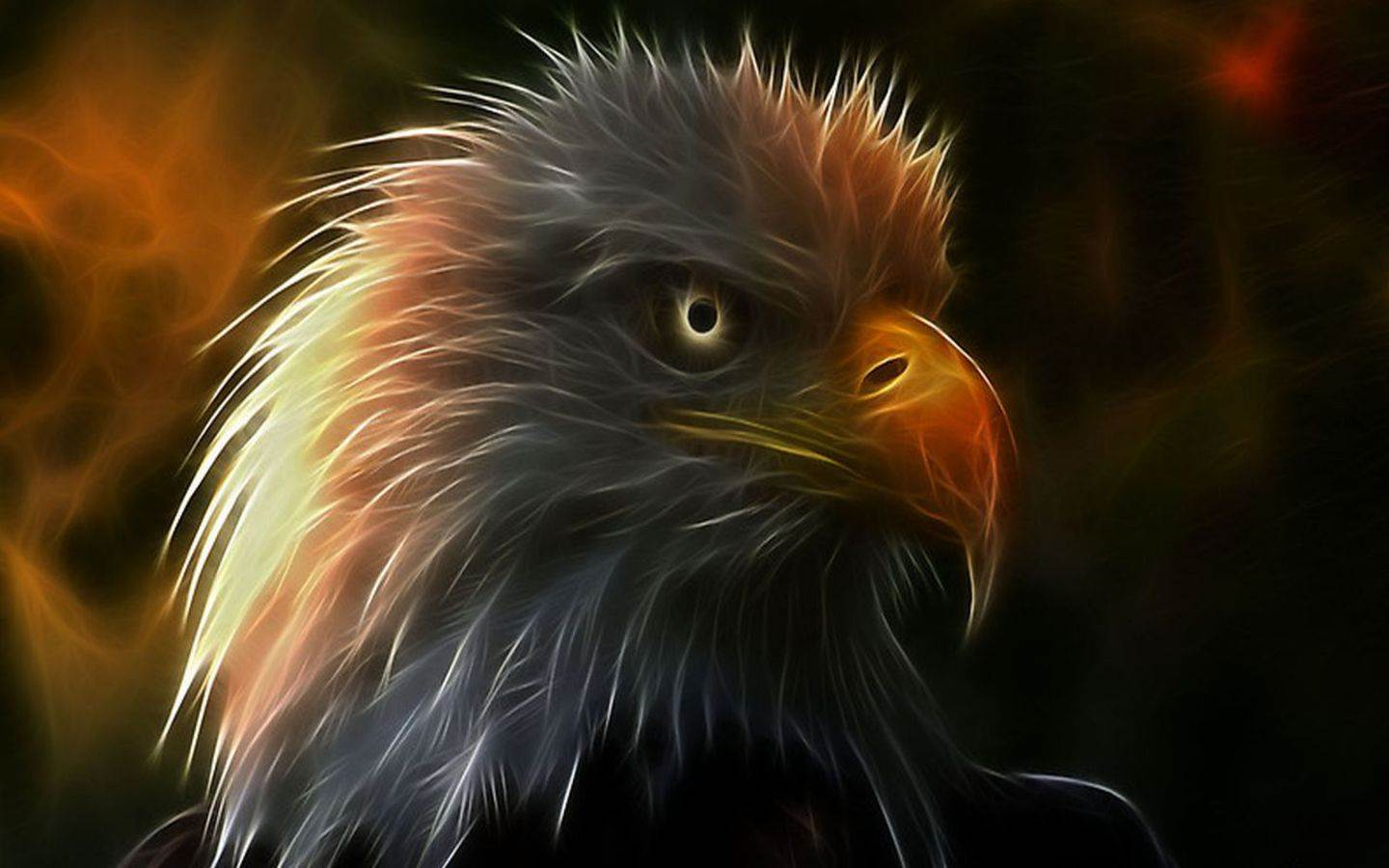 Eagle wallpaper  Android Apps on Google Play 1440x900
