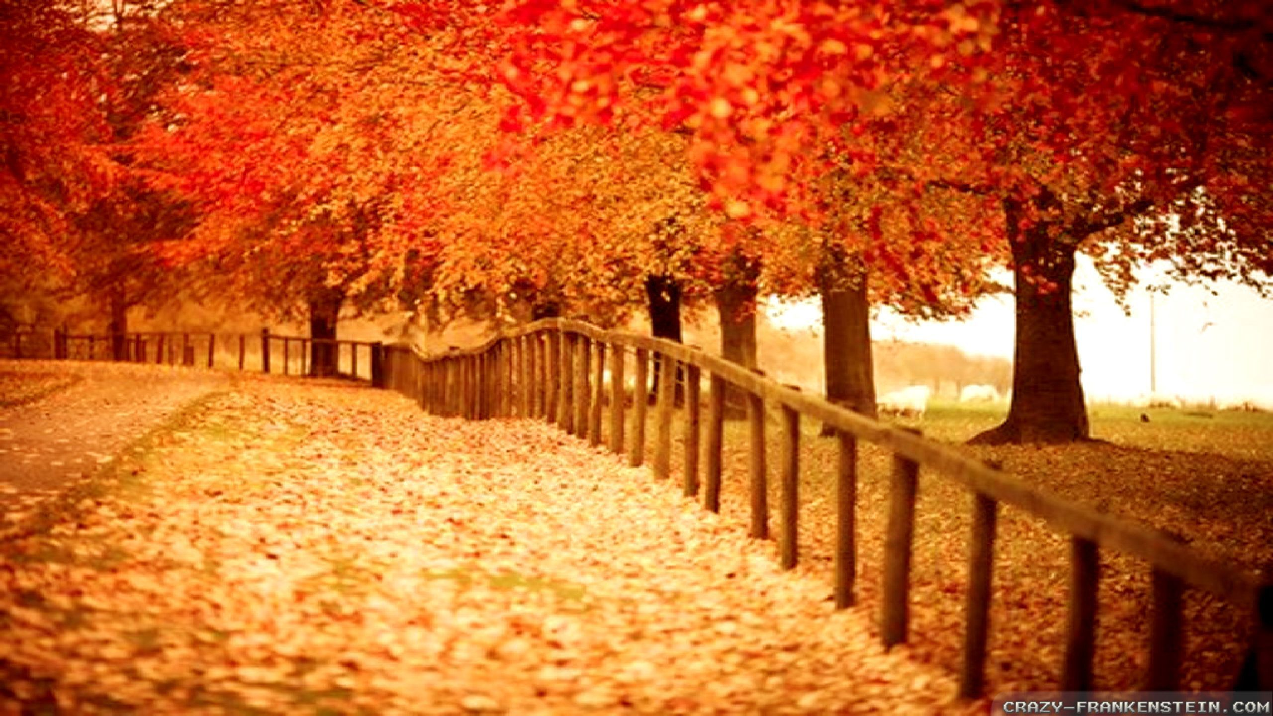 Beautiful Fall Backgrounds LANDSCAPE WALLPAPERS