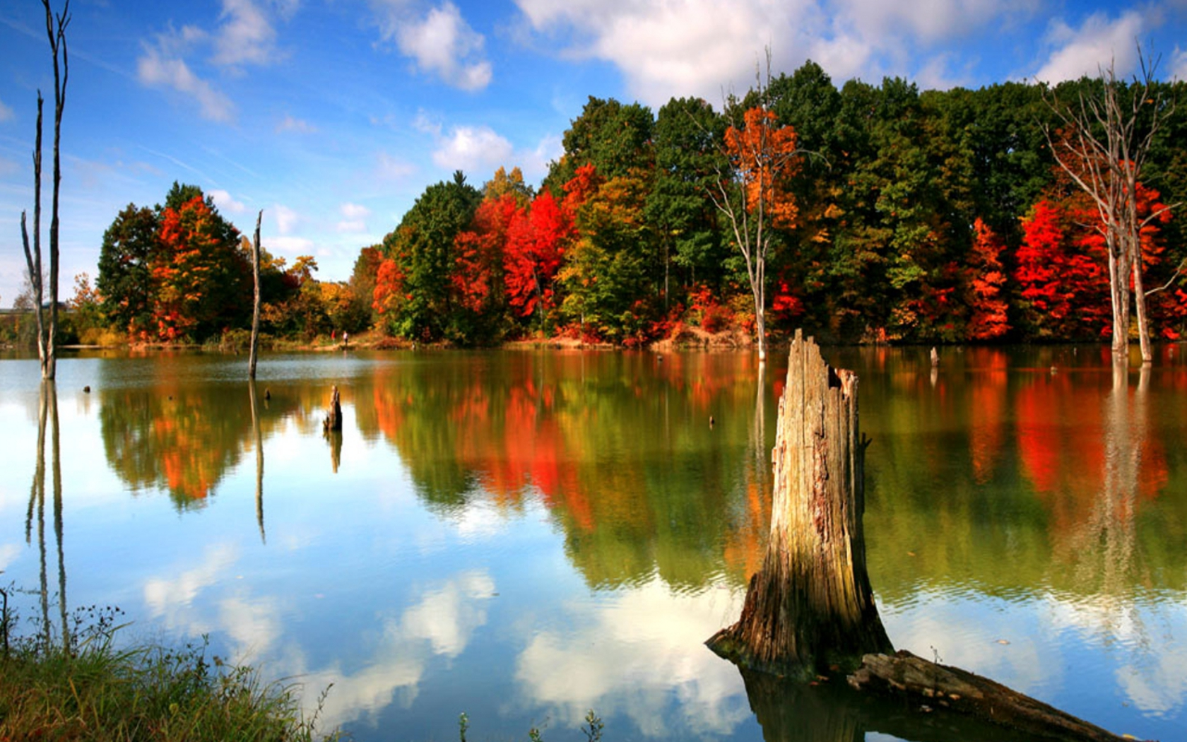 Fall Themed Desktop Backgrounds 18 Wallpapers Adorable Wallpapers