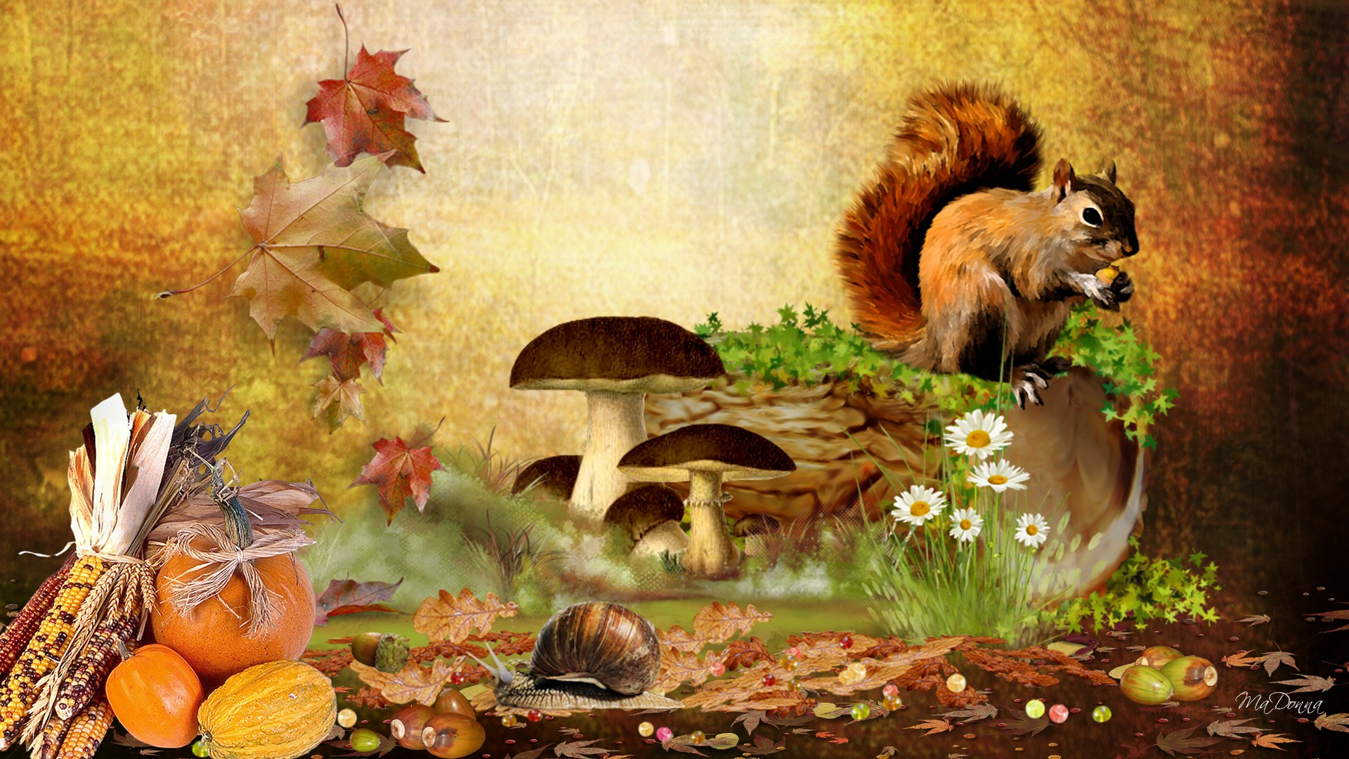 Fall Wallpapers For Android (16 Wallpapers) - Adorable ...