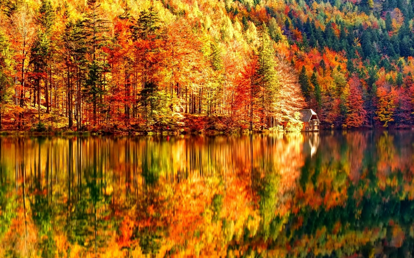 Splendid Autumn Wallpaper Wallpaper Studio  Tens of thousands