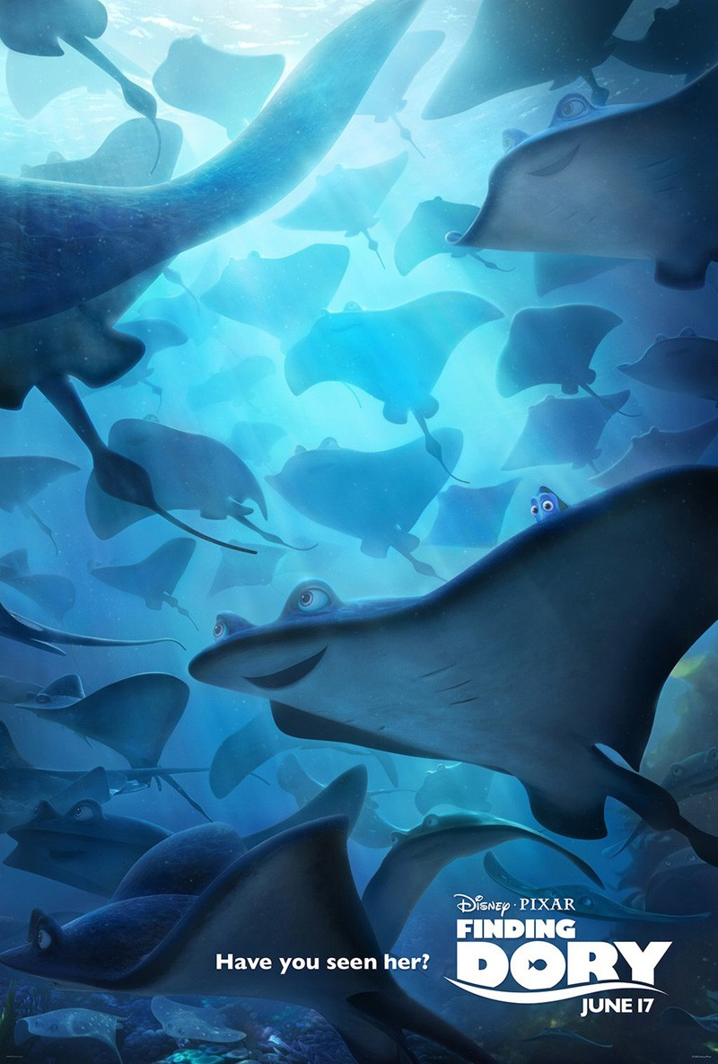 Finding Dory Disney Pixar Animation Iphone Hd Wallpaper 800x1185