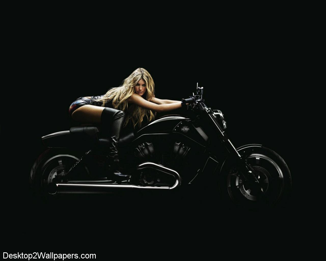 Free Harley Davidson Wallpapers  HD Wallpapers  Opengavel Wallpapers Of Harley Davidson Group  1280x1024