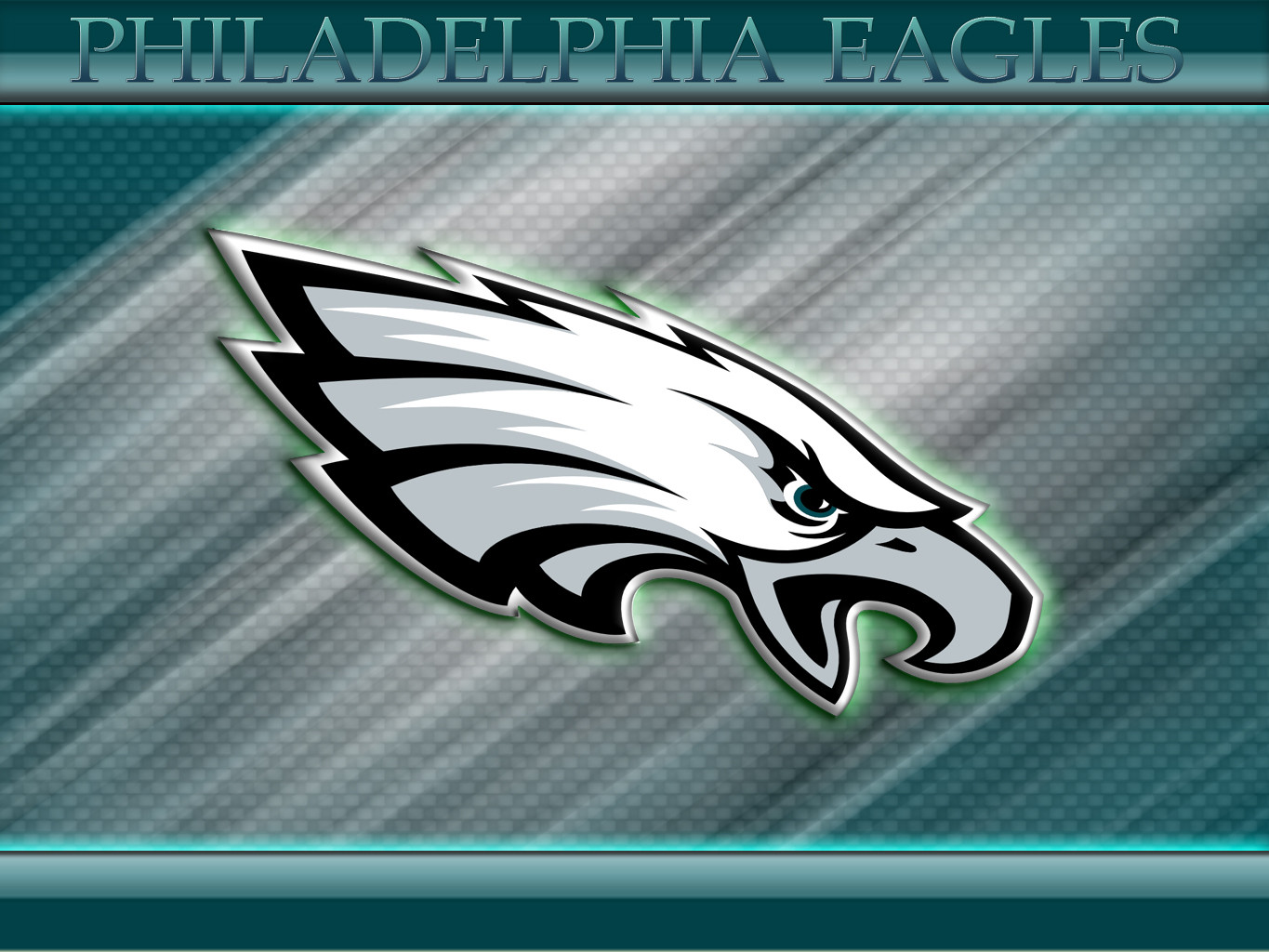 Eagles Football Wallpapers 1365x1024
