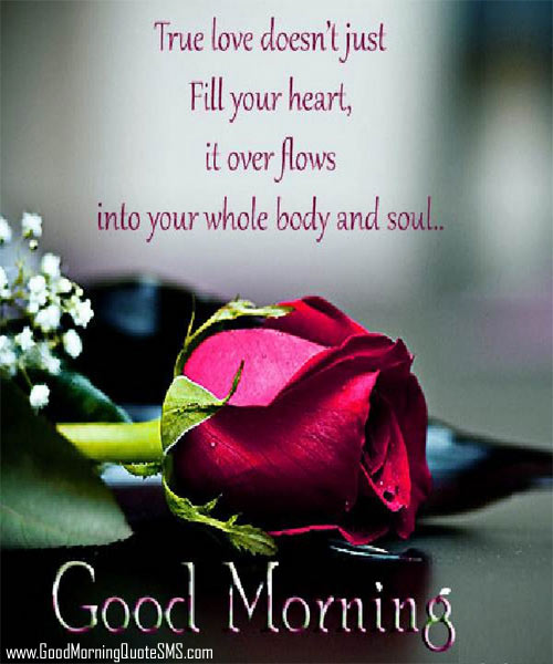 Morning Wishes For Him: Good Morning Images For Him Wallpapers (36 Wallpapers