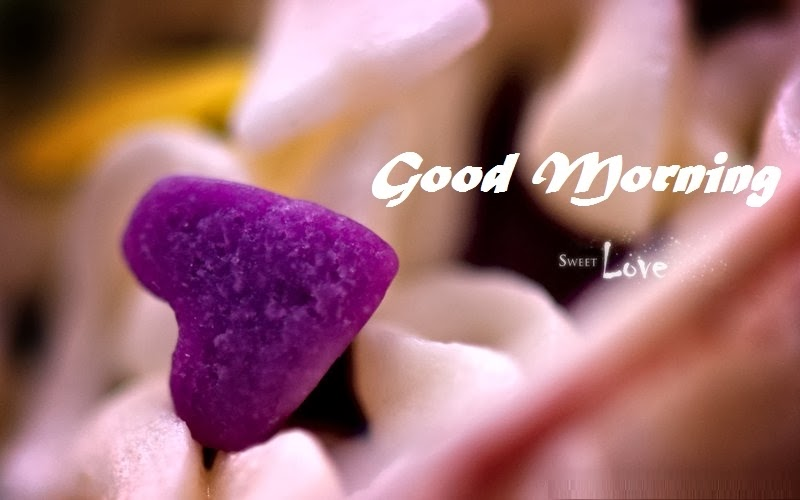 Good Morning Love Wallpaper Wallpaper Free Download 800x500