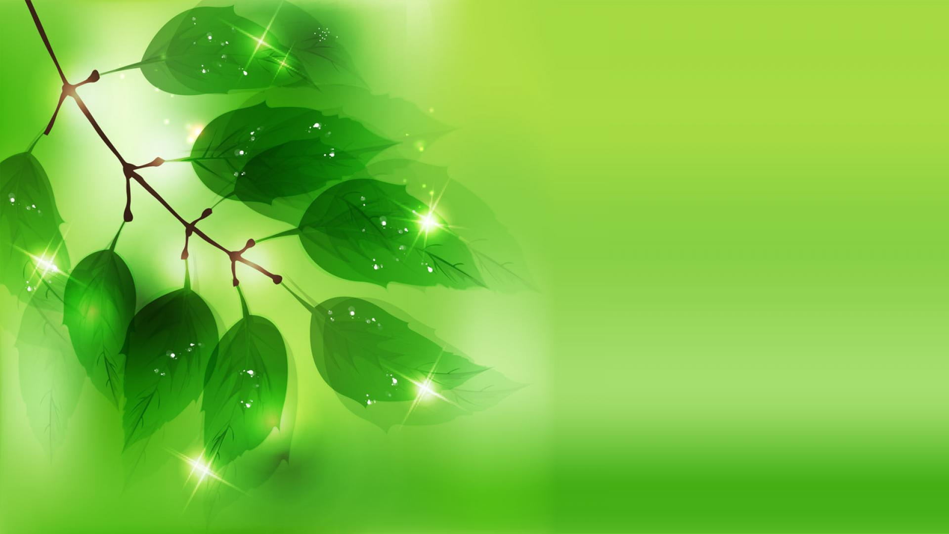 Attractive Green Background 1920x1080