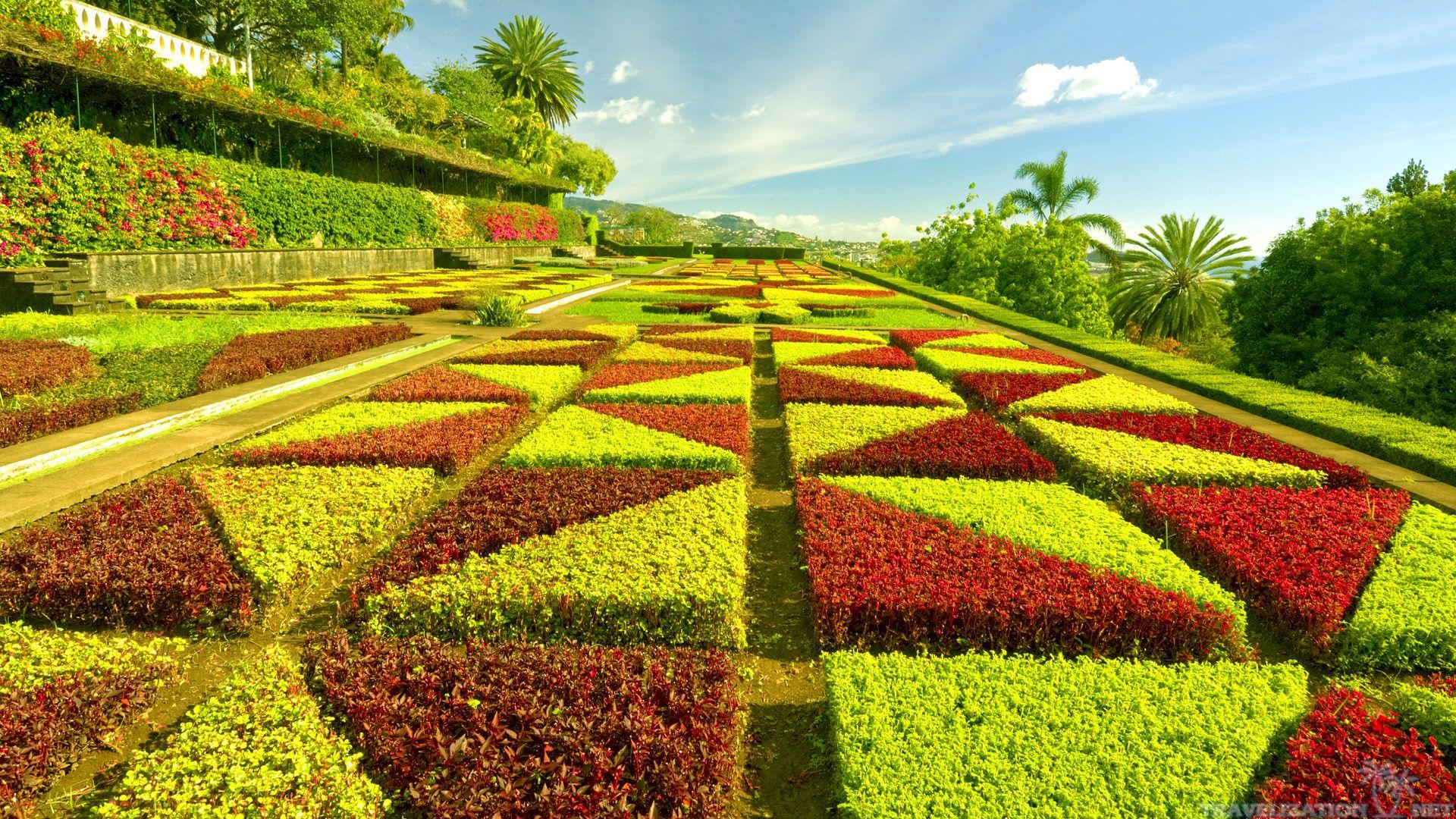 Download Beautiful Green Garden Wallpaper Full HD Wallpapers 1920x1080