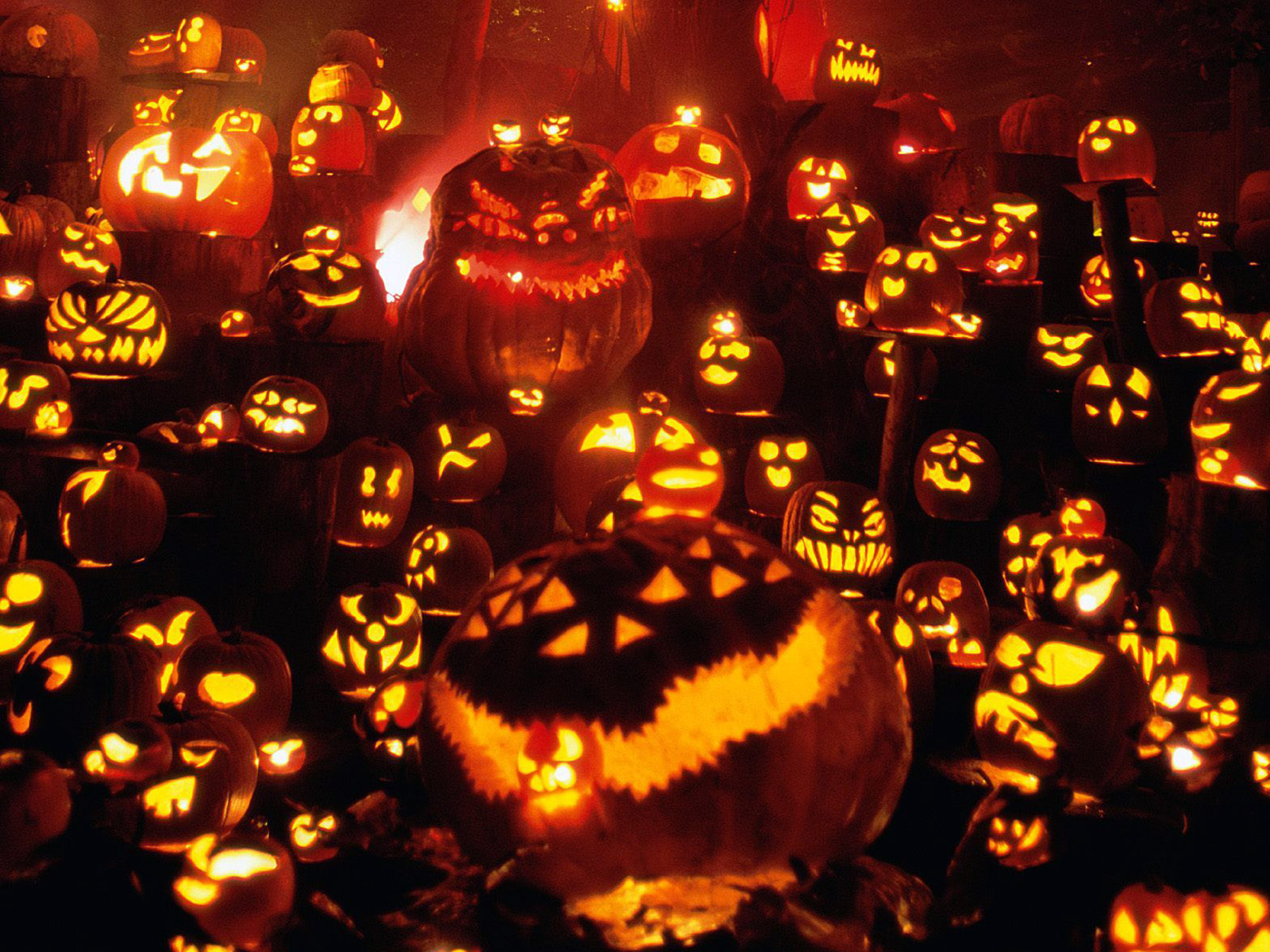 HD} Halloween Screensavers and Wallpapers Free Download  Happy 1600x1200