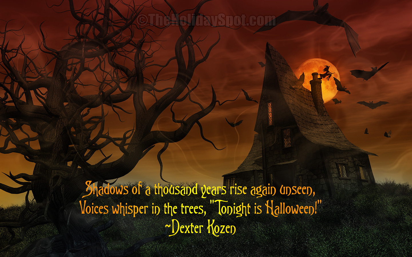 Free Halloween Wallpapers  Best Wallpapers 1440x900