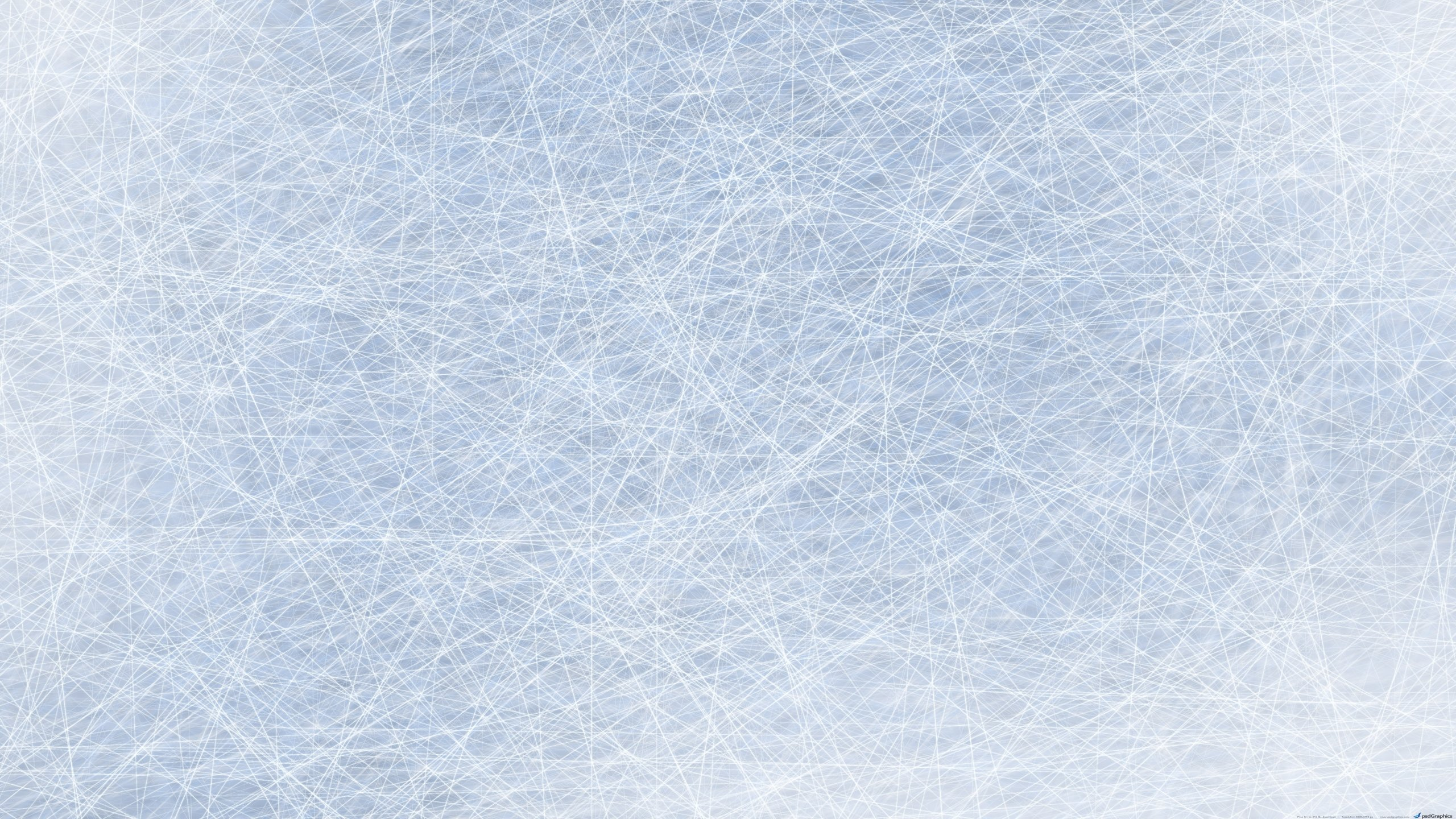 Ice Hockey Wallpapers Hd Wallpapers 2560x1440